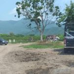 muere campesino 150x150 - Tecomán: Muere campesino en Madrid tras ser aplastado y calcinado por su tractor