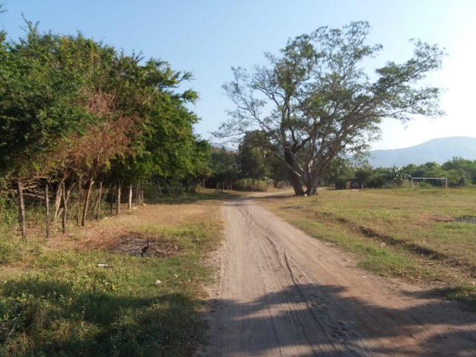 empleo temporal ixtlahuacan 696x522 - Con buenos resultados continúa el programa de empleo temporal en Ixtlahuacán
