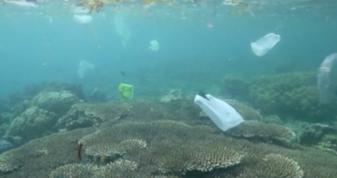 contaminacion mar