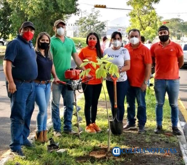 reforestación Felipe