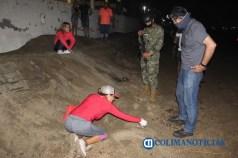 Arriba tortuga dañada de su caparazón a playas manzanillenses 2