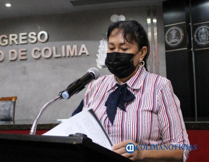 diputada en congreso Araceli García