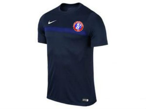 spartans training top badge