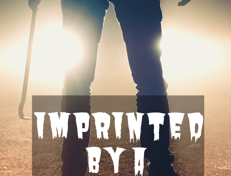 Imprinted by a Genre