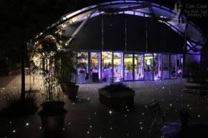 Alnwick Garden Pavilion Uplighting in Purple