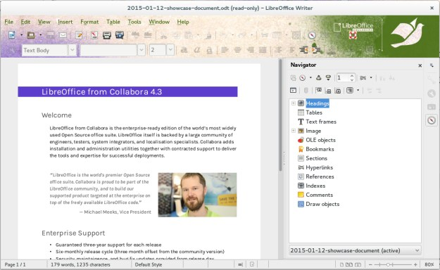 LibreOffice using Collabora's Document Freedom Day theme