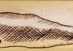 whale scrimshaw