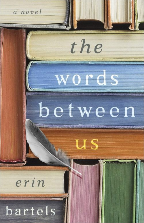 the cover of the novel the words between us