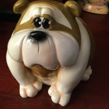 Little Chubby Comical Bulldog