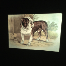 Slide of vintage and antique paintings