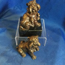 French bronze bulldogs 3