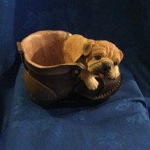 Bully in a shoe maybe a planter