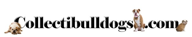 Welcome to www.collectibulldogs.com The World Class Bulldog collection online!