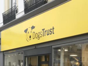 Dogs Trust Shop