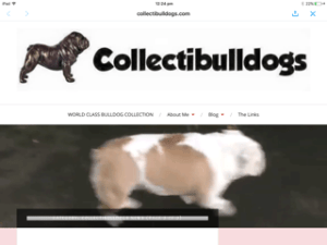 New Look Site