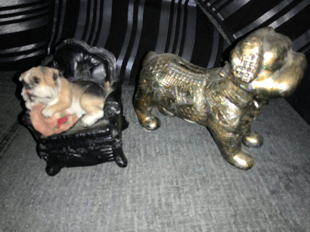 Bulldog money boxes pocket money Holders