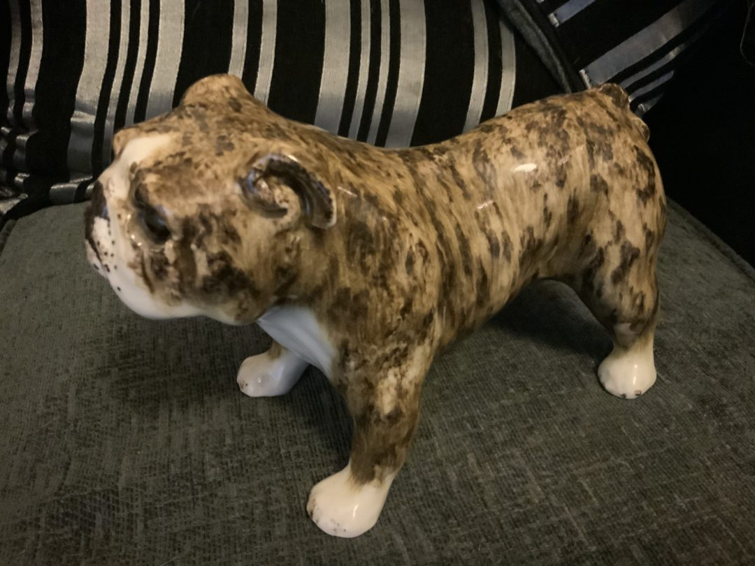 Brindle Bulldogs a beautiful fur patina