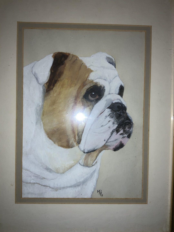 Bulldog statue - orange and white delight