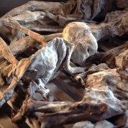Massacre de l'école technique de Murambi