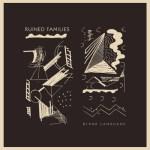 Ruined Families - Blank Language - LP (2013)