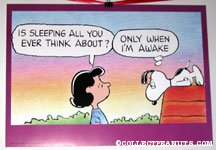 Snoopy and Lucy Poster