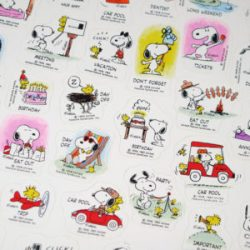 Click to shop Snoopy Calendars