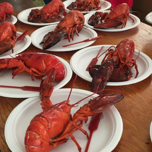 Lobster Line-Up - Colleen Friesen