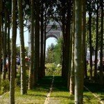 Looking through the artifical forest of real trees to the Arc de Triomphe