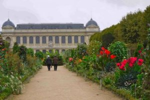 Ladies walking among flowers along path to Natural History Museum, Jardin des Plantes, Paris
