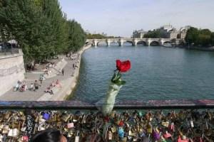 Padlocks and rose on a guardrail on Pont des Arts looking toward ile-de-la-Cité