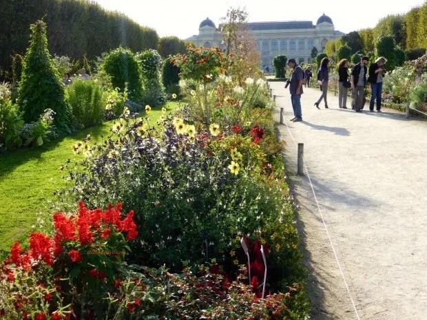 jardinsplantes01 colleensparis