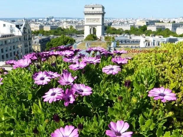 Raphael flowers view Arc de Triomphe colleensparis