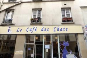 Large brand logo on storefront of Cafe des Chats, Paris, France, Bastille, rue Sedaine