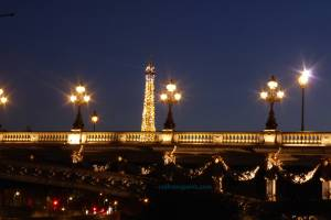 Pont Alexandre III and the Eiffel Tower complimenting each other with lights