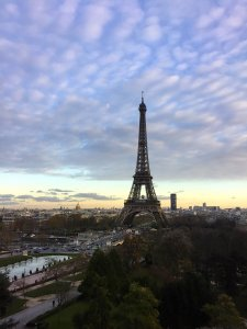 View of Eiffel Tower and Invalides and Montparnasse Tower from a clean window at Musée de l'Homme