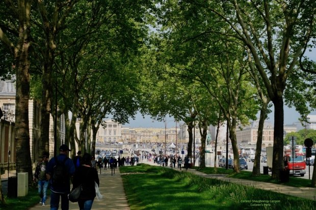 Tree-lined boulevard leading the Palace of Versailles