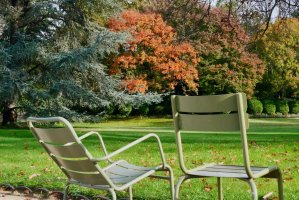 Image of two chair styles during Autumn at Luxembourg Gardens
