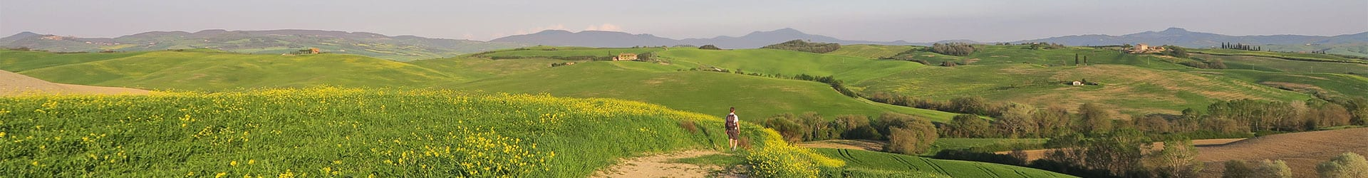 Walking in Tuscany with Collett's