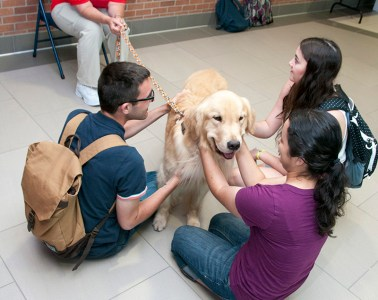 photo os students petting dog