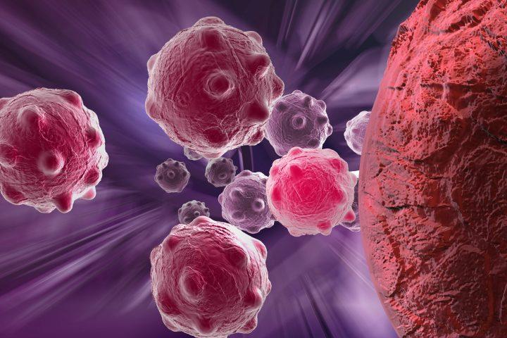 Coronavirus (COVID-19) FAQs