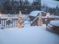 snowpocalypse02
