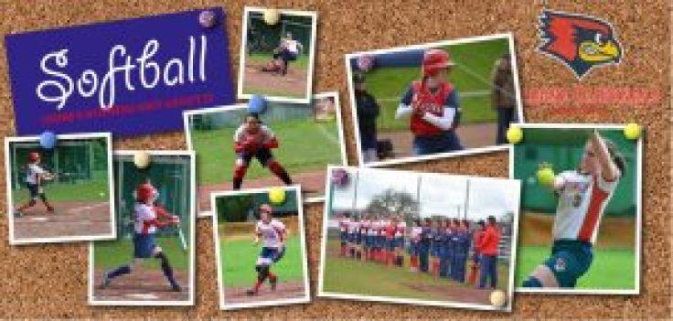 softball_flyer