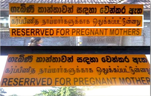 Tamil Sinhala Translation errors