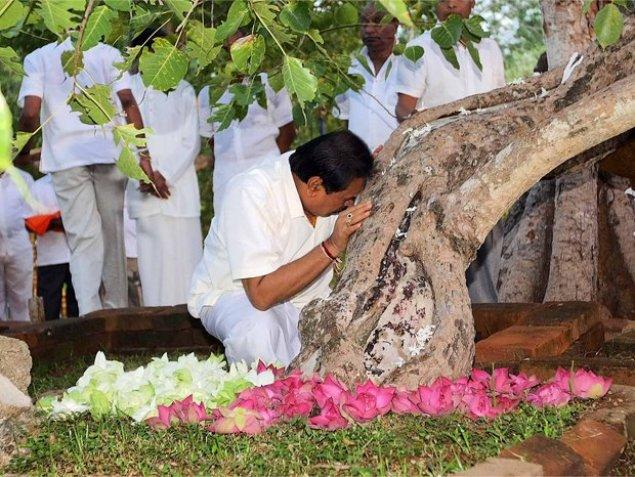 mahinda Sri Maha bodhi