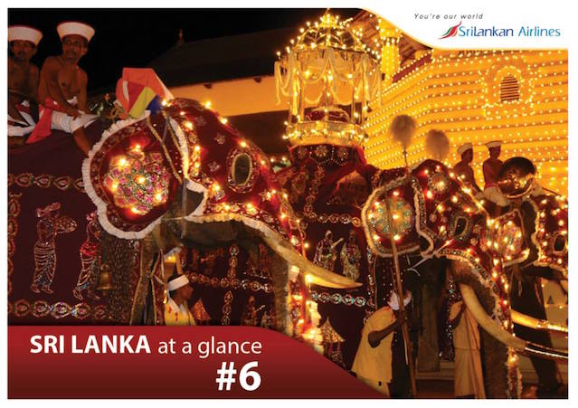SriLankan Airlines Elephent Ad