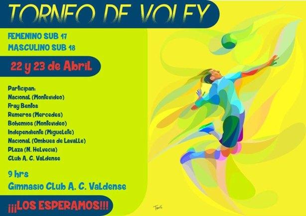 torneo-voley-juvenil-afiche