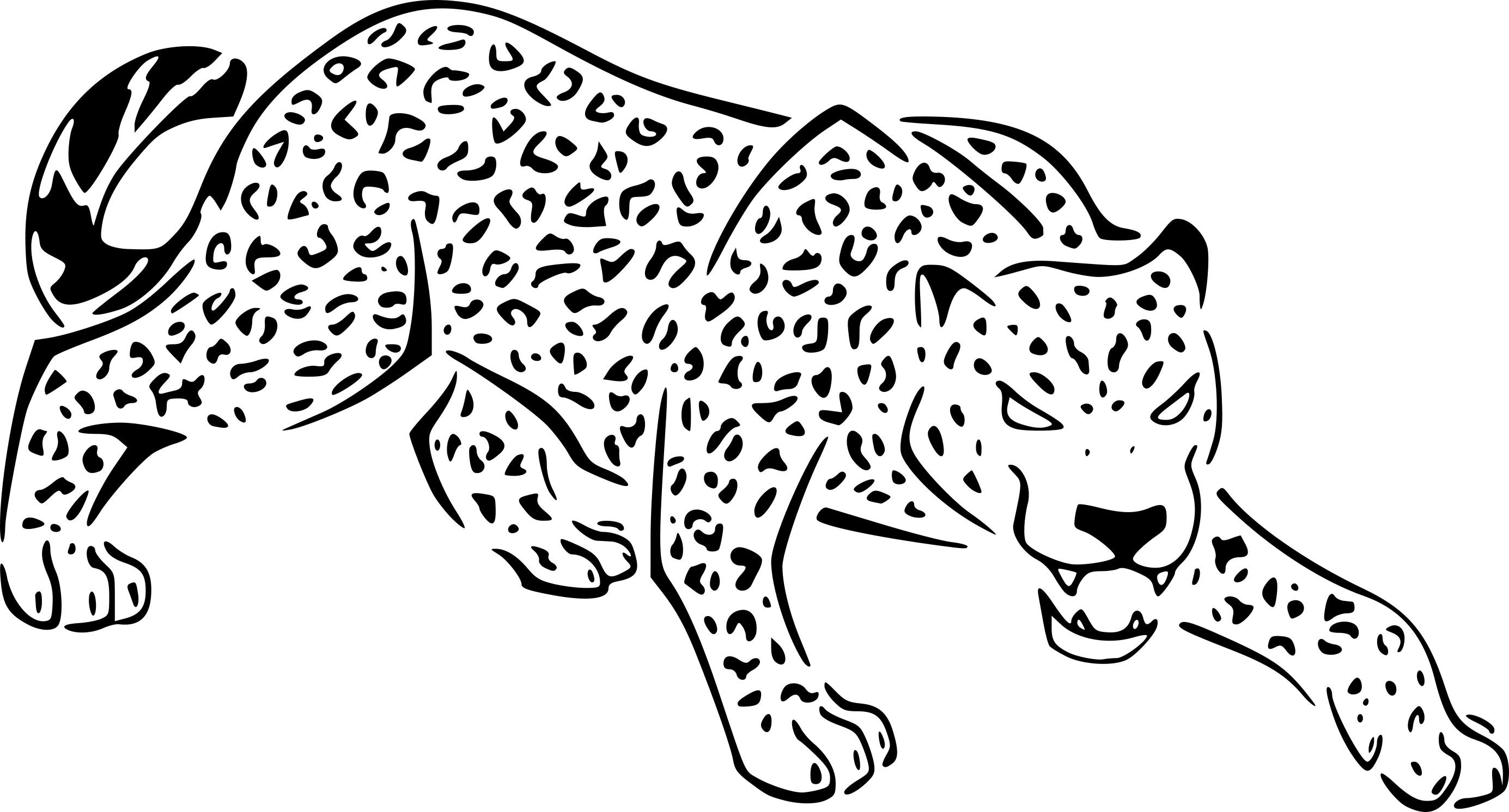 Coloriage Jaguar Et Dessin A Imprimer