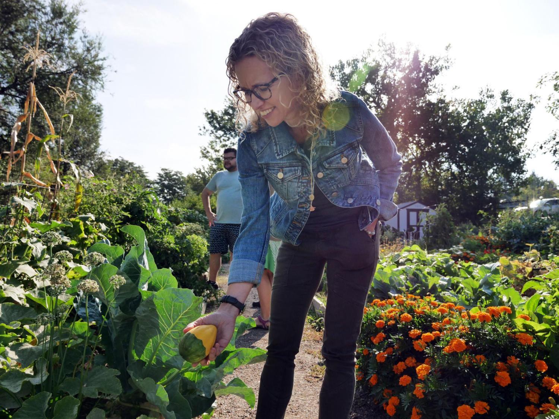 Community Garden Spring Planting Photos Westview Atlanta