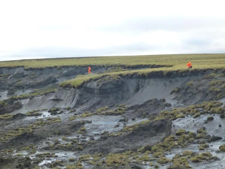 A massive thaw slump on the Yedoma coast of the Bykovsky Peninsula is inspected by an AWI permafrost team.