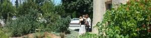 Neighbors visiting Throop Learning Garden on Sunday morning (Photo - staff).
